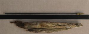 Finishd wood above and raw wood below bolted to linen canvas, 14X36 inches by Leonard Gerwick