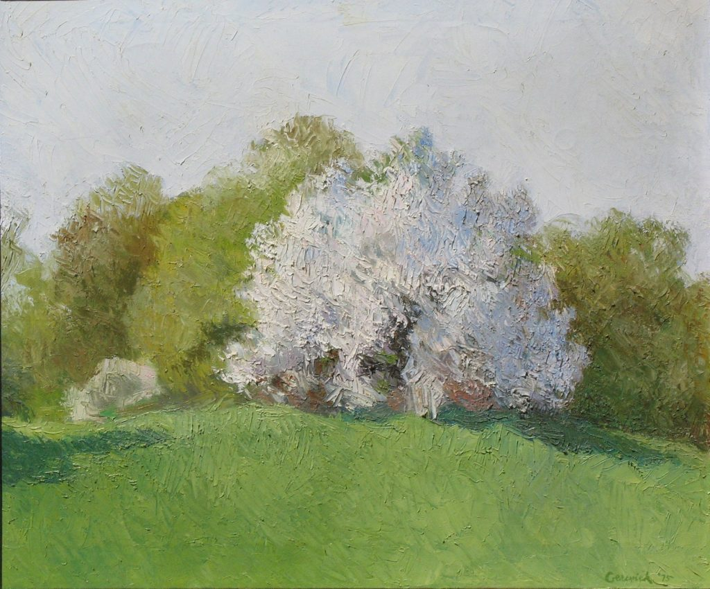 Oil painting of a flowering tree in field in franklin Massachusetts, 22X25 inches by Leonard Gerwick
