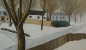 Road, houses and yards in snow